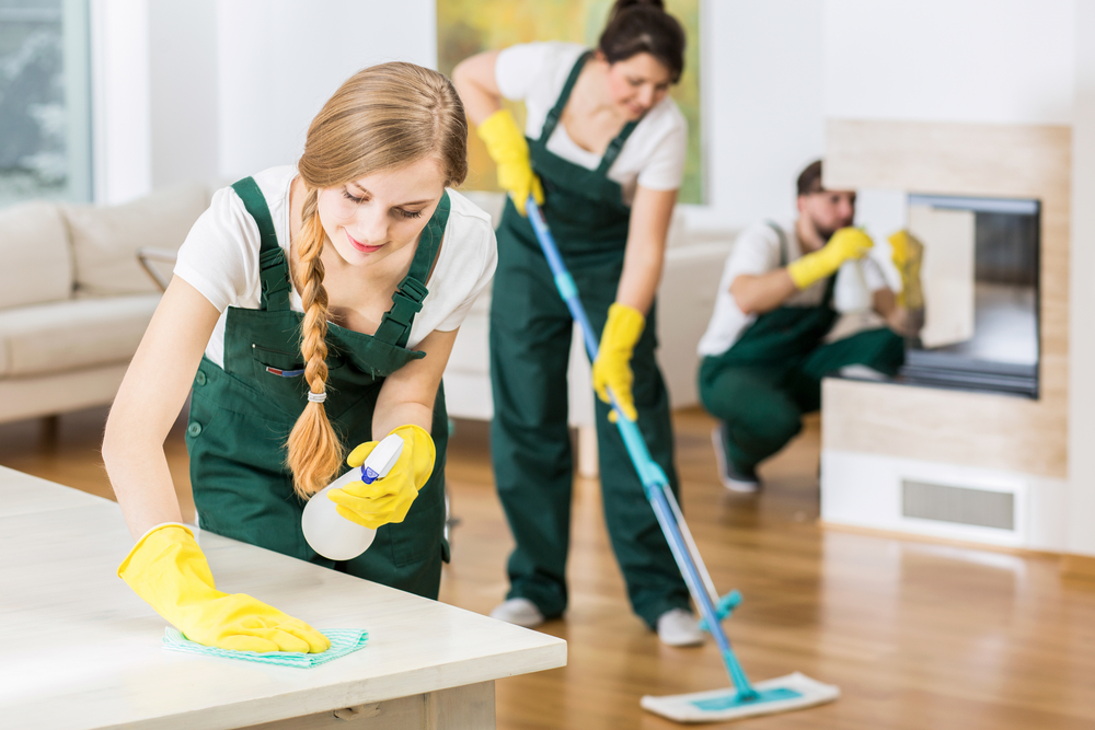 Choosing the right cleaner for your office and home | Cookes Storage Service